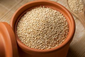 퀴노아 남아메리카가 원산지인 곡물로 작은 좁쌀 정도의 크기를