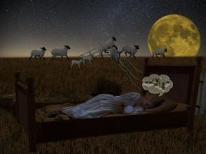 불면증 원인 집이 아닌 다른 곳에서 잠들면 쉽게 잠들기도